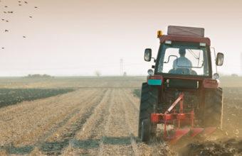 Thumbnail of Farm Loans