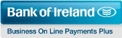 business-on-line-payment-plus